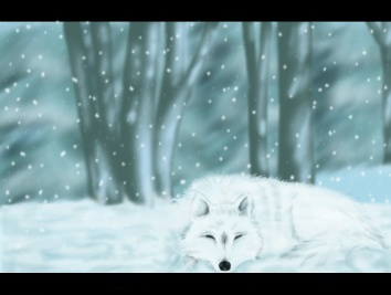 allanwolf