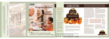progress-report-2007
