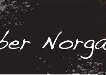 Newsletter banner 2012
